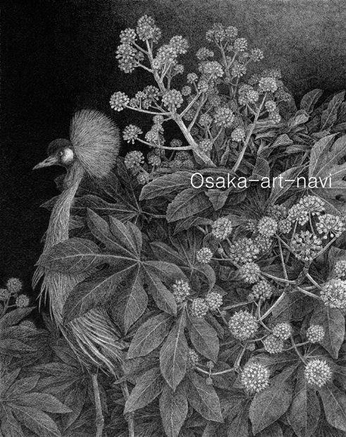 画像1: 【ペン画】『 Japonesque  冬』-日本原産の植物を描く-ヤツデ もとゆきこ