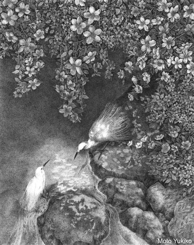 画像1: 【ペン画】『 Japonesque  春』-日本原産の植物を描く-ヤマブキ  もとゆきこ