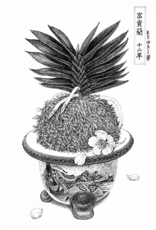 画像1: 【ペン画】『 富貴蘭  -十二単-』  もとゆきこ