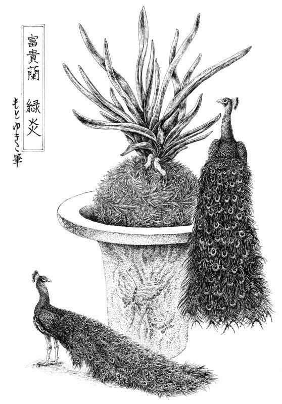 画像1: 【ペン画】『 富貴蘭  -緑炎-』  もとゆきこ