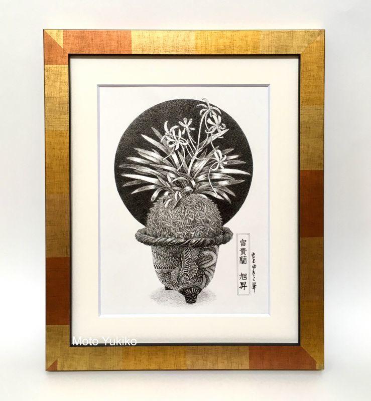画像2: 【ペン画】『 富貴蘭  -旭昇-』  もとゆきこ