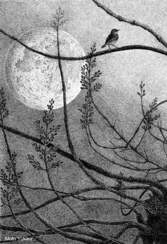 画像1: 『月が綺麗ですね -夜明け前-』  もとゆきこ【ペン画】